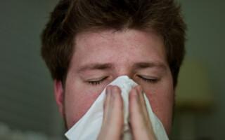 Chřipka jako nebezpečný virus