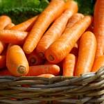 Chráníme se před rakovinou mrkví