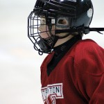 Připravte se na Mistrovství světa v hokeji 2013