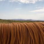 Pár základních typů, jak si správně mýt vlasy