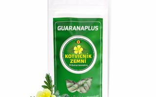 Co má společného guarana a kotvičník? Více než si myslíte